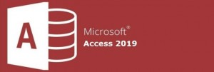 We are the Microsoft Certified Microsoft Access Consultants & Experts