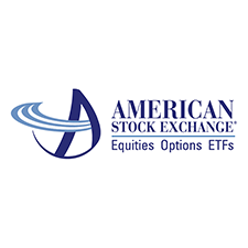 Firms on the AME stock exchange hire us for our financial services consulting and training